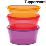 "Tupperware  ""Frische Set"""