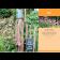 Mein schöner Garten Kalender 2021 2