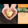 Mein schöner Garten Kalender 2021 3
